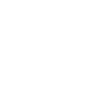 Established 20 years